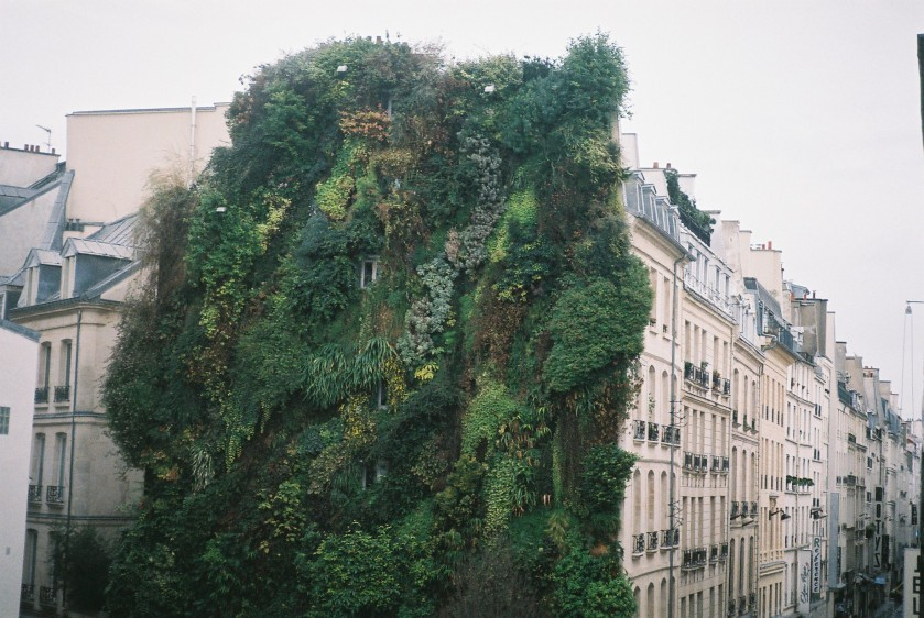 Apartment view, Paris